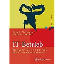 IT-Betrieb: Management und Betrieb der IT in Unternehmen (Xpert.press)