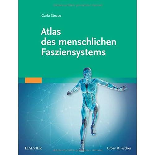 PDF] Atlas des menschlichen Fasziensystems KOSTENLOS HERUNTERLADEN ...