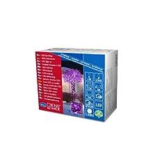 Konstsmide 3627-450 Guirlande 40 Micro LED Violettes + Câble Noir 24 V