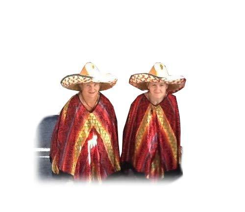 KarnevalsTeufel Sombrero Set Mexikanerhüte Mexikohut Strohot Sommerhut Verschiedene Sets Multipacks Mexico Mexikaner Spanien farbenfroh (2er Pack) (Hüte Party Große)