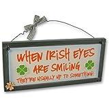 Heartwarmers Funny Irish Sign Irish Eyes Wall Plaque