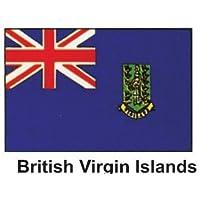 Nuovo di zecca 0,91 m x5ft del Mondo Bandiera - isole Vergini Britanniche
