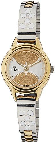 41MuylRGvdL - Titan 2401BM01 Silver For Women watch