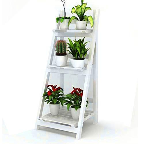 Folding Plant...