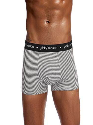 Herren Trunks Komfortable Unterhose Herren Boxershorts, Pants, Unterhosen, Boxer, Shorts, Trunks JAMINY (XL, Grau)