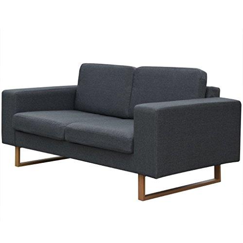 Vidaxl divano 2 posti in tessuto grigio scuro