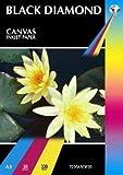 20 Sheets - Black Diamond Quality White A3 220gsm Matt Canvas Textured Hi Resolution (7220 dpi) Inkjet Paper