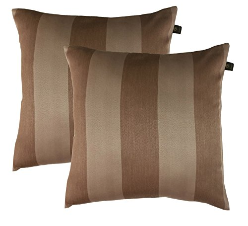 Lushomes Blackout Adorable Light Brown Set of 2 Cushion Covers (Size:20