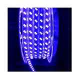Mufasa Double Row LED Strip Light Waterproof Roll (120 led/Mtr) (Blue, 5 Meter)