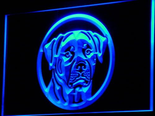 enseigne-lumineuse-i684-b-rottweiler-dog-breed-pet-shop-neon-light-sign