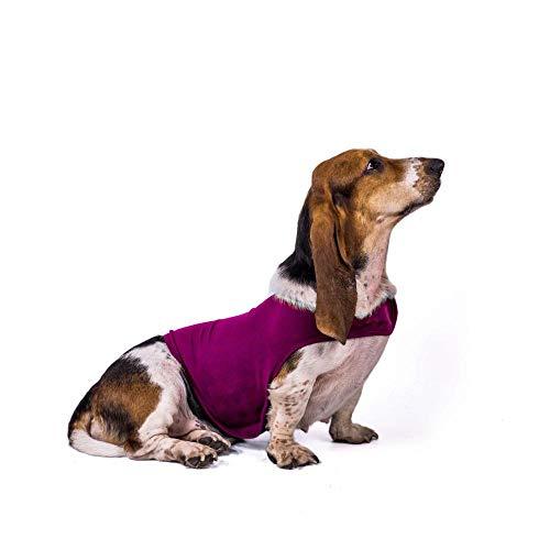 WLBD Hundekleidung Kittel @ Rose red_M hundemantel s klein -
