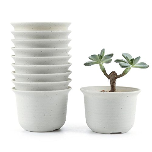 t4u-rond-plastique-pots-de-pepiniere-en-pot-de-plante-plante-recipient-pepiniere-pots-succulents-cac