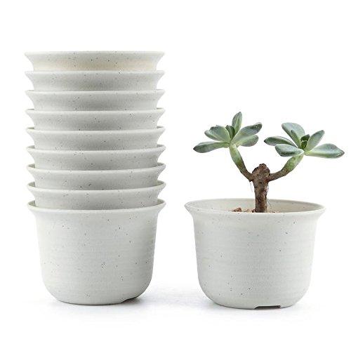 t4u-conjunto-de-10-corto-ronda-plastico-planta-maceta-suculento-cactus-planta-maceta-planta-contened