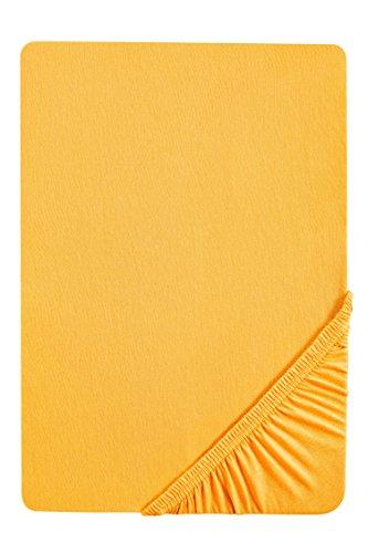 biberna 77144 Jersey-Stretch Spannbetttuch, nach Öko-Tex Standard 100, ca. 60 x 120 cm bis 70 x 140 cm, gelb