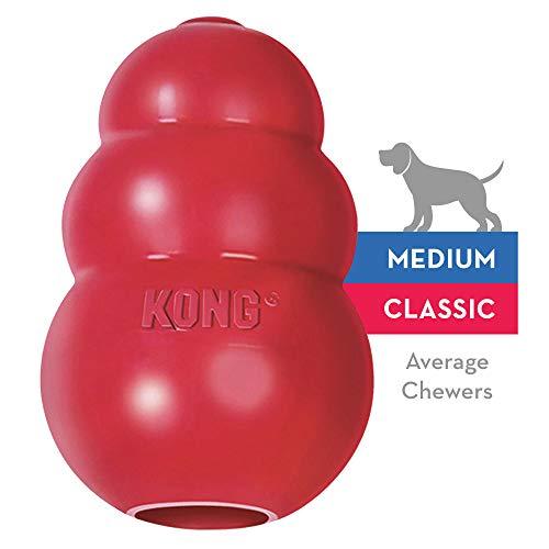 KONG - Classic Hundespielzeug, Robuster Naturkautschuk - Kauen, Apportieren - Mittelgroße Hunde
