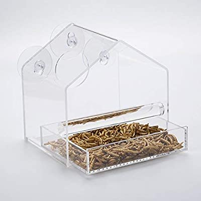 UPGRADED Window Bird Feeder with Glossy BOX, Great Gift, Sliding Feed Tray, Crystal Clear Perspex, Weatherproof Design, Squirrel Resistant, Drains Rain Water to keep bird seed dry! by Chrysalis Products
