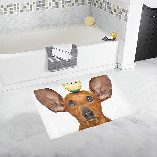 Kostüm Niedliche Dackel - JOCHUAN Lustige dackel Wurst Hund Osterhase benutzerdefinierte rutschfeste badematte Teppich Bad fußmatte Boden Teppich für Bad 20x32 Zoll