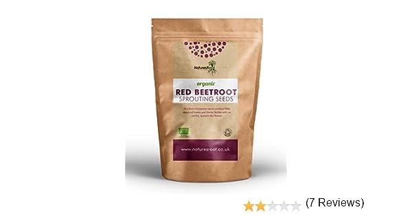 Microgreens Biologico Certificato Non OGM Germogli di microgreen Nature/'s Root Semi di Barbabietola Rossa Bio 250g