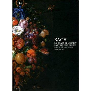 Musik für Himmel und Erde (Buch mit 6 CD) - Orgel-musik-bücher