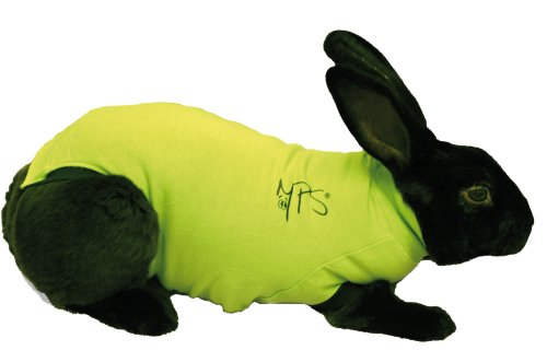 Medical Pet Shirt Kaninchen S