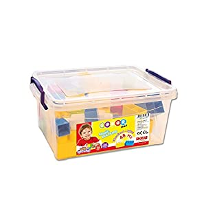 Fisher-Price- Big Blocks IN Plastics Box 48 PCS, (6265088)
