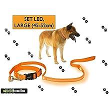 ECOBELLE® set Collar de perro + Correa de perro luminoso LED, Alta Visibilidad y Securidad por la noche, 3 Modos de luz, USB Recargable (2 cables USB incluidos), color NARANJA. Tamaño de correa 1.20m, Tamaño de collar GRANDE 45-52cm (regulable)