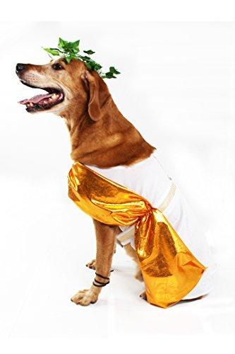 Midlee Toga Hund Kostüm, - Römische Kopfbedeckung Kostüm