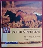 Westernpferde: Quarter Horses /Paint Horses /Appaloosas