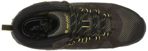 Hi-Tec Total Terrain Mid Wp, Chaussures de randonnée homme Marron-TR-I3-213
