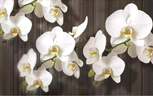 WH-PORP Costum 3D Tapete Phalaenopsis Blumen Holzmaserung Moderne Tv 3D Hintergrund Wand-350cmX245cm