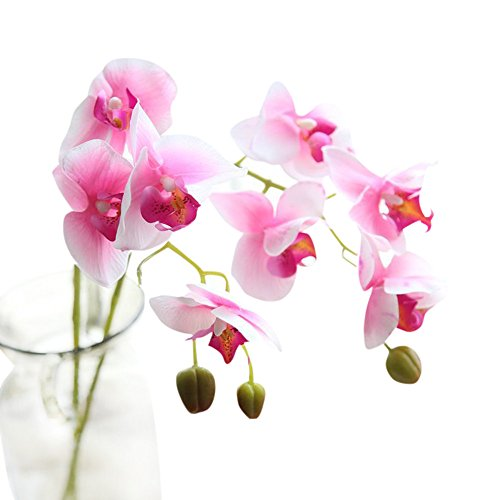 YWLINK KüNstliche Silk GefäLschte Blumen Phalaenopsis Hochzeitsstrauß Party-Zuhause Dekor 1 Blumenstrauß BlüTe 8,5 Cm - 9,5 Cm,LäNge: 71cm
