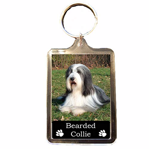 Bearded Collie – Collectable Dog Keyring