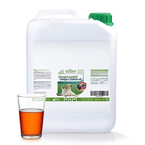 AniForte Omega-3 Lachsöl für Hunde, Katzen, Pferde 5 Liter - Kaltgepresst, Reich an Omega 3 und Omega 6 Fettsäuren, Fischöl Barf Ergänzung, Natur Pur, Ohne Zusätze -