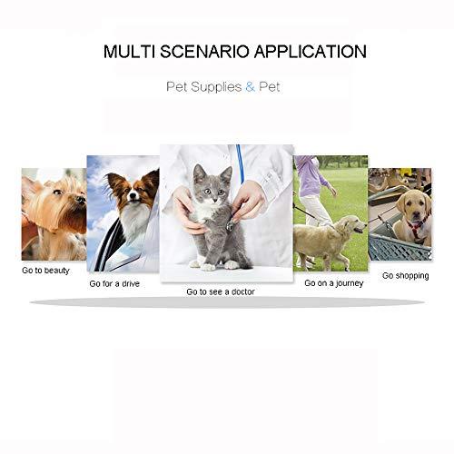 41N%2BimkXx L - XLY Rodillo Mascota Mochila, Viajes Animal doméstico del Doble con Ruedas Aprobado por la aerolínea Portador del Perro Monedero para Gatos Perros, Malla de ventilación, Mango telescópico,Gris