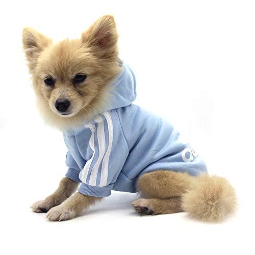 QiCheng&LYS Hundemantel Adidog Hund Hoodies Kleidung, Pet Puppy Katze Niedlicher Baumwoll Warm Hoodies Coat Pullover (S, blau)