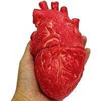 Uyuke Falso corazón Humano Látex Corazón de tamaño Real Accesorios de Terror sangrientos para Halloween