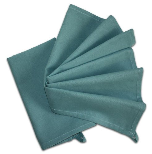 Tante Martha 's 100% Polypropylen Stitch 'em Up gesäumten Farbe Gefärbt Küche Handtücher 45,7x 71,1cm Robin Egg blau (2Stück), Robin Egg blau