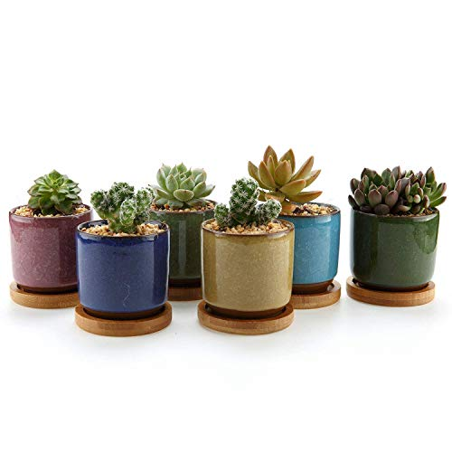 T4U 6.3cm Keramik Sukkulenten Töpfe Kaktus Pflanze Töpfe Mini Blumentöpfe EIS Crack Höher Serie 6 Farben Set mit Bambus Untersetzer