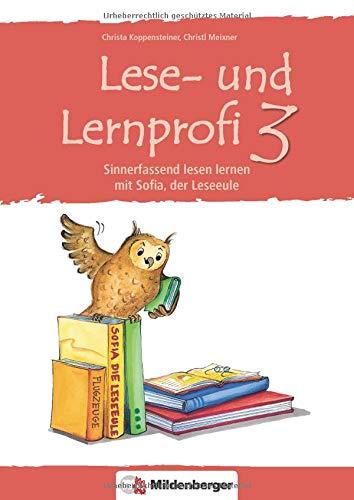 3 - Schülerarbeitsheft: Sinnerfassend lesen lernen mit Sofia, der Leseeule, Klasse 3 ()
