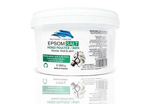 bleu & marine Bretania Epsom Salt 2.5 Kg Bittersalz für Pferde - Magnesiumsulfat zur allgemeinen Verwendung (Magnesium Ergänzung In Bio)