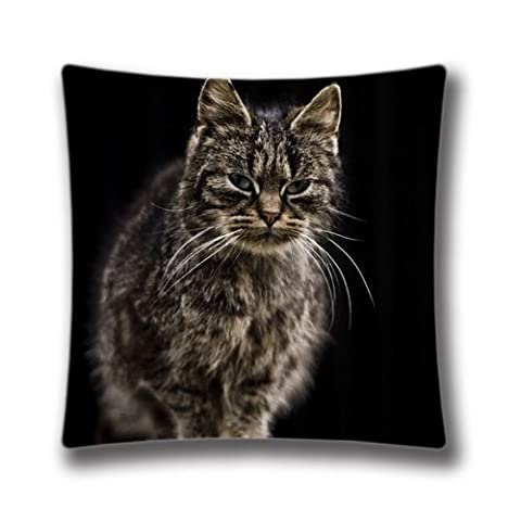 FlowerArtC1421-Custom Size 18 x 18 inch Pillow Cover Farm Cat Themed Zippered Square Cushion Cover-Christmas Decorations