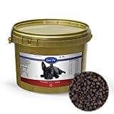 Lyra Pet Dog 1 kg Soft Strauß im Eimer High Premium getreidefreies Hundefutter