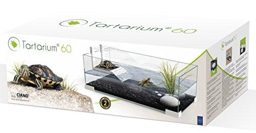 Ciano - Teca in vetro Tartarium 60 per rettili, con rampa