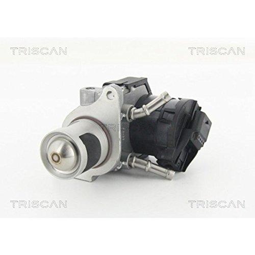 TRISCAN 8813 11001 AGR-Ventile