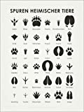 Posterlounge Leinwandbild 100 x 130 cm: Spuren heimischer Tiere von Iris Luckhaus - fertiges Wandbild, Bild auf Keilrahmen, Fertigbild auf echter Leinwand, Leinwanddruck