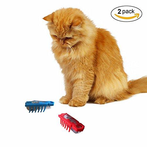 Nano Robot Bug Cat Toys von mixse 2er Pack elektronischen subformulare Interaktives Spielzeug, um Ecke hält Innen Katze Jagd Jagt, inklusive Batterie ¡ªplays wie ein echter Bug -