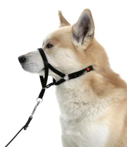 Karlie Master Control cani Harness per la formazione