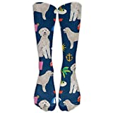 Walnut Cake Hohe Socken Golden Doodle Dog Beach Summer Graduated Compression Socks for Men & Women Best Stockings for Nurses, Travel, Running, Maternity Pregnancy (65CM)