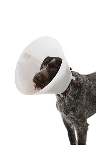 Buster - Collarín para perros