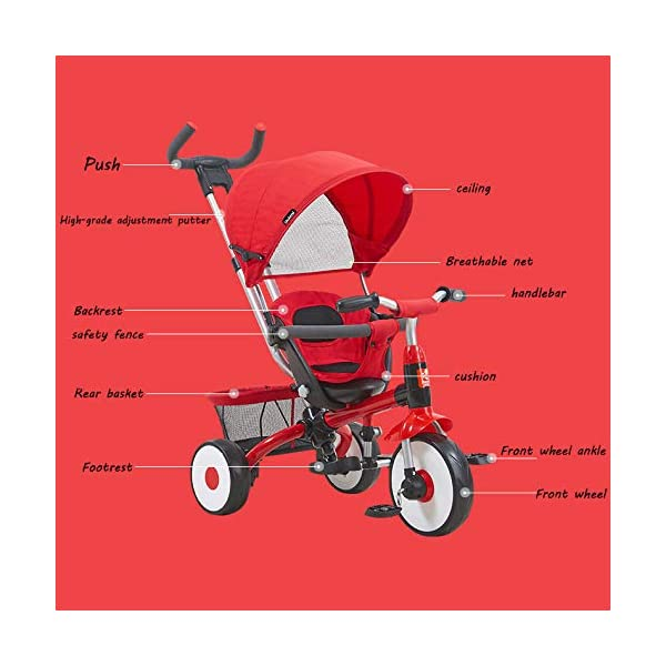 BGHKFF 4 In 1 Childrens Tricycles 9 Months To 4 Years Stable Kids' Trikes Removable Shade Canopy Detachable And Adjustable Push Handle Versatile Kids Tricycle Maximum Weight 30 Kg,Gold BGHKFF ★Material: Carbon steel frame, golden triangle structure, protect your baby's safety, suitable for children from 9 months to 4 years old, maximum weight 30 kg ★ Baby car safety design: safety seat, detachable and adjustable parent handlebar, folding and detachable cover to protect children from UV damage ★ 4 in 1 multi-function: can be converted into a stroller and a tricycle. Remove the hand putter and awning as a tricycle. 6